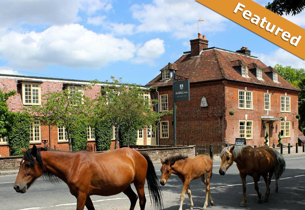 family friendly hotel in lyndhurst, new forest
